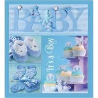 Купить Альбом EVG 20sheet Baby collage Blue w/box - 20sheet Baby collage Blue w/box